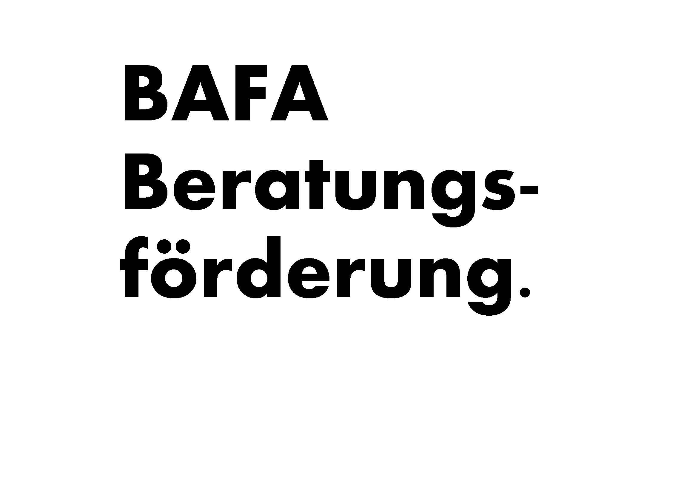 BAFA Beratungsförderung